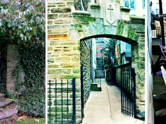 East Falls Local collage of neat local walk