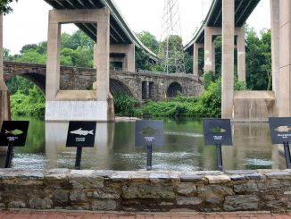 EastFallsLocal-6-14-fish-plates-focus-river-wall-briks-fixd-stretch.jpg