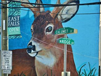 EastFallsLocal-9-27-deer-face-calumet-ridge-signs-zoom-1024x683-1-1024x683.jpg