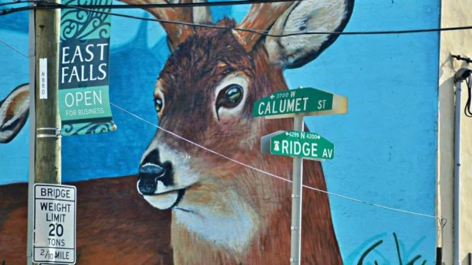 EastFallsLocal-9-27-deer-face-calumet-ridge-signs-zoom-1024x683-1-1024x683.jpg