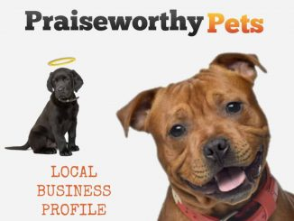 EastFallsLocal-Praiseworthy-Pets-2-black-puppy-brown-dog-txt-Local-Business-Profile-1024x819.jpg