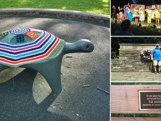 EastFallsLocal-summer-2016-collage-post-1.jpg