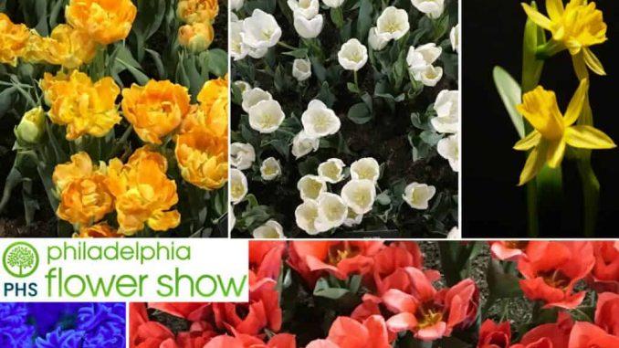 EastfallsLocal-Phila-Flower-Show-collage-1024x789.jpg