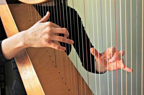 Eastfallslocal.Harp-Strings-1024x682.jpg